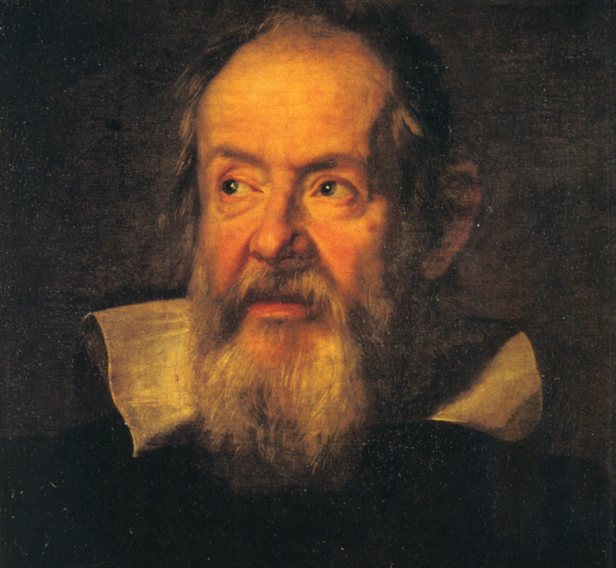 Galileo-sustermans2.jpg (1230×1134)